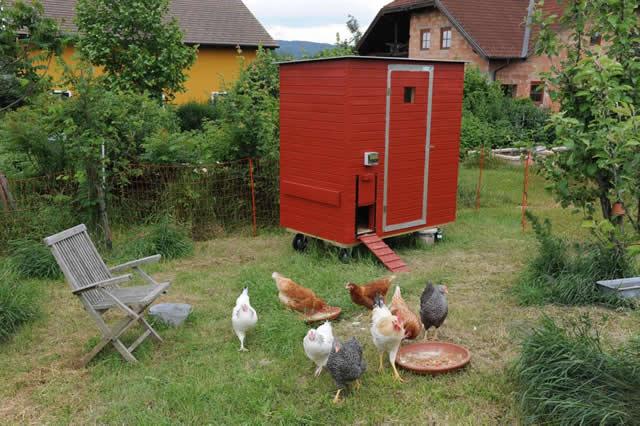 Hühnerstall Referenz 13