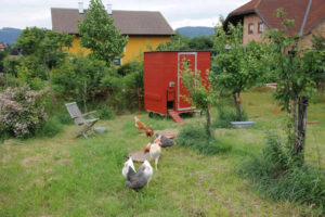 Hühnerhaus Referenz 13