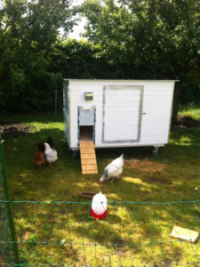 Hühnerstall Referenz 17