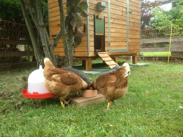 Hühnerstall Referenz 15