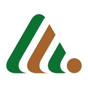 logo holzbau hasselfelde ohg